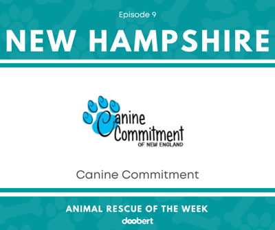 Cover art for Canine Commitment - New Hampshire