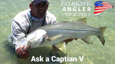 Cover art for Ask A Captain Part V