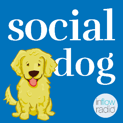 Social Dog is devoted to inspiring, motivating, and educating both dog owners as well as those who love dogs. We're a community where dog lovers can learn more about topics relevant to dogs and their social well-being.  We'll be teaming up with some of the most capable animal experts in the world in order to teach you as much as possible about your pooch, including how to train, exercise, socialize, and love them!  We'll speak with animal communicators, training experts, forward-thinking veterinarians, animal advocates, breeders, and other dog owners just like yourself in our quest to love up our furry friends. If you have a question about your dog, be sure to call us live for answers on every show.  Social Dog is so excited to be part of In FlowRadio and co-creating a better life for dogs with love and compassion.