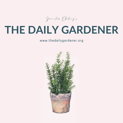 The Daily Gardener is a gardening podcast that is published every weekday.   Jennifer Ebeling shares thoughts and brevities to help you grow. She writes and records the show in her home studio in lovely Maple Grove, Minnesota.   Show notes and additional information are available at thedailygardener.org