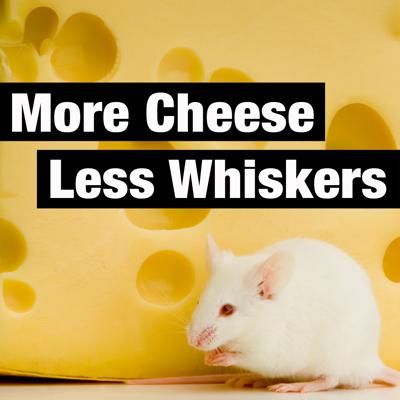 More Cheese Less Whiskers