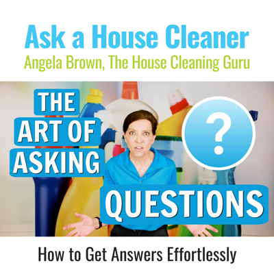 The Art of Asking Questions on a Cleaning Job