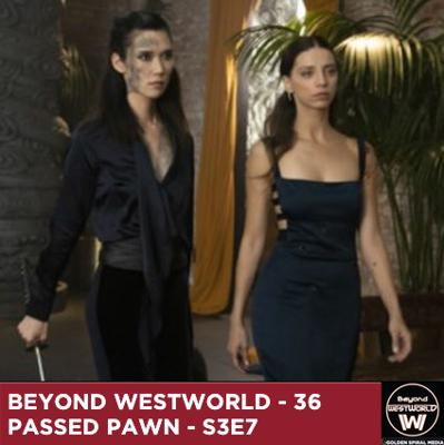 Cover art for Passed Pawn - Westworld S3E7