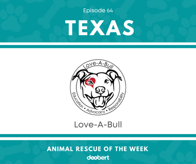 Cover art for Animal Rescue of the Week: Episode 64 – Love-A-Bull