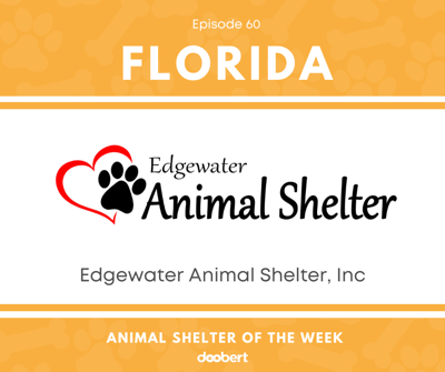 Cover art for Animal Shelter of the Week: Episode 60 – Edgewater Animal Shelter, Inc