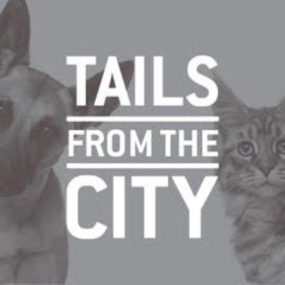 TAILS from the CITY