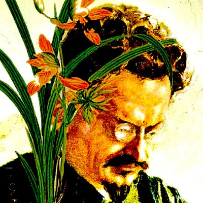 Trotsky & the Wild Orchids
