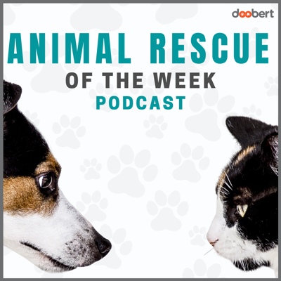 Each week we interview a different animal rescue organization from around the country to share their mission and programs for helping animals.  Learn new ideas, listen to amazing stories, and be inspired by professionals that are saving animals every day.