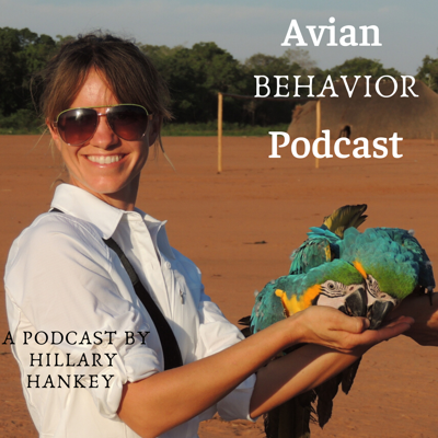 If you are into animal behavior and positive reinforcement training, you're in the right spot. World renown animal behavior consultant, falconer, and educator Hillary Hankey dives deep with conversations and case studies on parrots, birds of prey as well as horses, dogs and all kinds of animals on topics of behavior as well as nutrition, ethology, and problem solving.