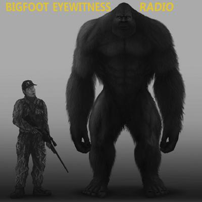 They're known by many names; Bigfoot, Sasquatch, Yowie, Yeti, Almas and the list goes on.  For centuries, eyewitnesses have reported seeing them in forests all over the world.    You might wonder what's it like to have an encounter with a Sasquatch.  Well, listen to the show and you'll hear eyewitnesses tell you what it was like for them when they encountered a Sasquatch.