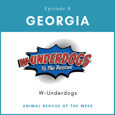Cover art for W-Underdogs - Georgia