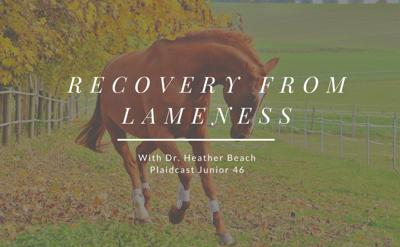 Cover art for How to Help Your Horse Recover from Lameness, by the World Equestrian Center