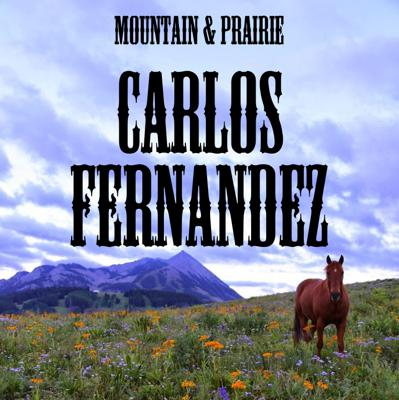Cover art for Carlos Fernandez - The Power of Partnerships