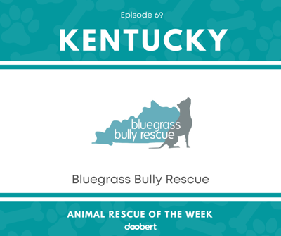 Cover art for Animal Rescue of the Week: Episode 69 – Bluegrass Bully Rescue