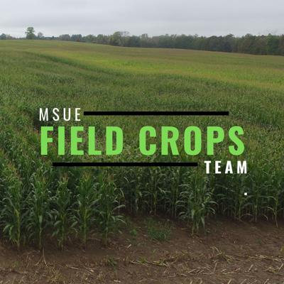 In agriculture, things change fast and growers need on time, on task, and on target weather, crop and pest information. To meet this need, the Michigan State University Extension (MSUE) Field Crops team will provide farmers and agribusiness with timely podcasts.