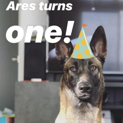 Cover art for Ares First Birthday Special!