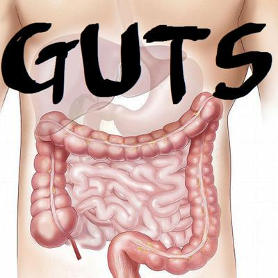 Cover art for Guts