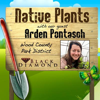 Cover art for Midwest Native Plants