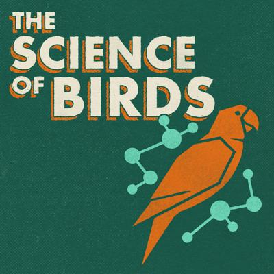The Science of Birds is a lighthearted, guided exploration of bird biology. It's a fun resource for any birder or naturalist who wants to learn more about ornithology. Impress your birding friends at cocktail parties with all of your new bird knowledge! Hosted by Ivan Phillipsen, a passionate naturalist with a PhD in Zoology.