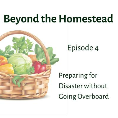 Cover art for Preparing for Disaster Without Going Overboard | Ep. 4