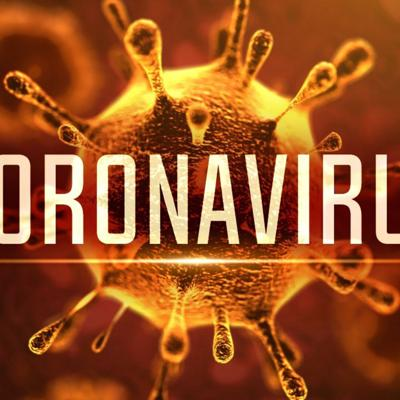 Cover art for 9. CoronaVirus: The Impact & Implication On The Supply Chain