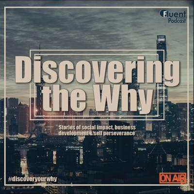 Discovering the Why