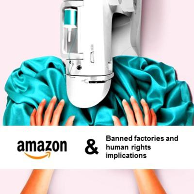 Cover art for Episode 5. Amazon Expose - Implications for human rights