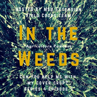 Cover art for In the Weeds: Can You Help Me with My Cover Crop?