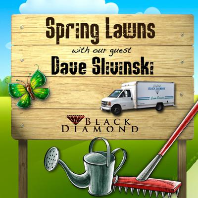 Cover art for Spring Lawn Service Basics