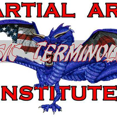Martial Arts Institute and Fitness