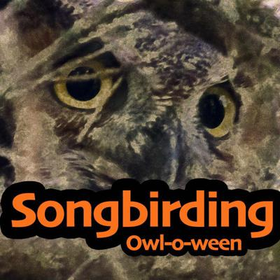 Cover art for The Owl-o-ween Special