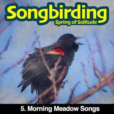 Cover art for S3E5 - Morning Meadow Songs