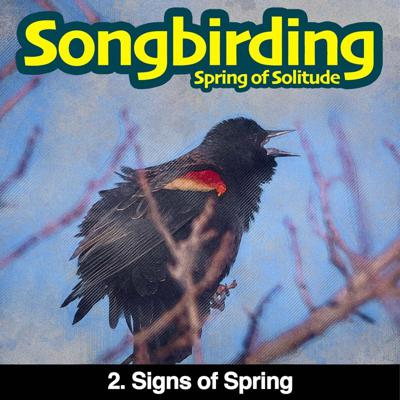 Cover art for S3E2 - Signs of Spring