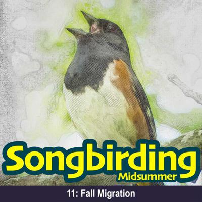 Cover art for S2E11 - Fall Migration (it really does start in August...)