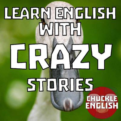 Cover art for S1E22 - Crazy Stories - I Can Talk To Ducks