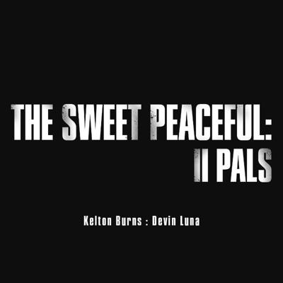 Cover art for The Sweet Peaceful - The Last of Us 2 Ep