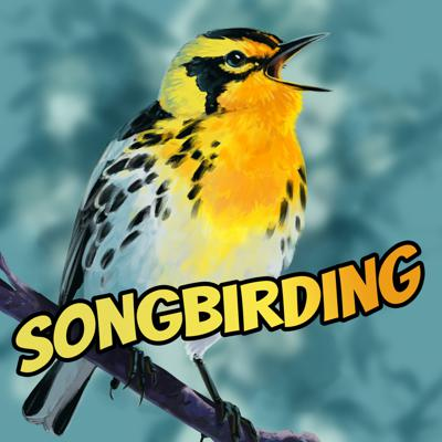 Immerse yourself in birdsong in this relaxed pace acoustic exploration of natural spaces in mid-western and southern Ontario. Whether you're an emerging or veteran birder looking to test and build upon your birdsong identification skills or someone who appreciates the natural world, this unique series will bring you as close as you can get to birding in the field without going anywhere.  Season 1,
