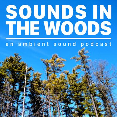 Sounds in the Woods