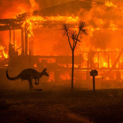 Cover art for 54 - Surviving a bushfire and coping after - with Danielle Graber