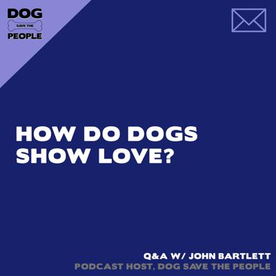 Cover art for Q&A - How Do Dogs Show Love?