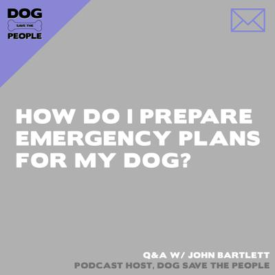 Cover art for Q&A - How Do I Prepare Emergency Plans For My Dog?
